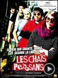 Photo : Les Chats persans Bande-annonce VO
