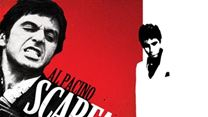 "Faux Raccord N°48 - ""Scarface"""