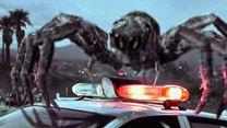 Top 5 N°155 - Les araignées géantes