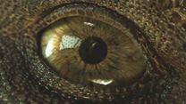 Jurassic World: Fallen Kingdom Teaser (2) VF