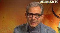 #Fun Facts - Jeff Goldblum