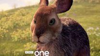 La Colline aux lapins - saison 1 Bande-annonce VO
