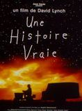 Une histoire vraie streaming