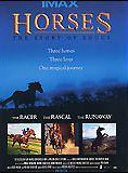 Trois chevaux, trois destins
