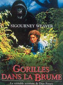 Gorilles dans la brume streaming
