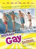 Another Gay Sequel: Gays Gone Wild! streaming gratuit