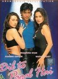 Dil To Pagal Hai streaming gratuit