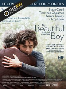 My beautiful boy en streaming vf complet