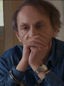 L'Enlèvement de Michel Houellebecq streaming