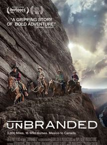 Unbranded streaming