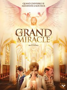 Le Grand Miracle streaming