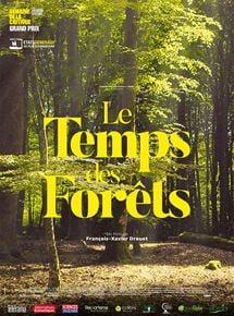 Le Temps des forêts streaming