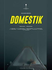 Domestique streaming