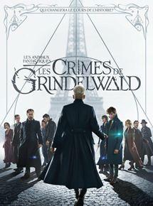 Les Animaux fantastiques : Les crimes de Grindelwald en streaming