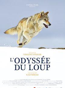 L'Odyssée du loup streaming