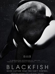 Blackfish streaming