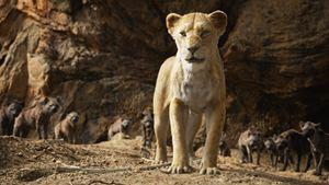Sorties cinéma : Le Roi Lion, Wild Rose, Le Coup du siècle... Les films de la semaine