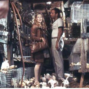 Les Gens de la pluie : Photo Francis Ford Coppola, James Caan, Shirley Knight