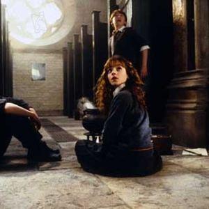 Harry Potter et la chambre des secrets : Photo Daniel Radcliffe, Rupert Grint