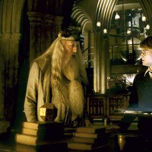 Harry Potter et le Prince de sang mêlé : Photo Daniel Radcliffe, Michael Gambon
