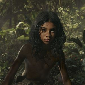 Mowgli : Photo Rohan Chand (II)