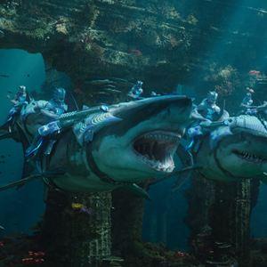 Aquaman : Photo