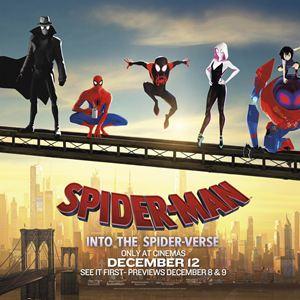spider-man : new generation : photos et affiches - allociné