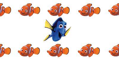 Quiz 1er avril : 11 poissons... 1 vraie news : à vous de la retrouver !