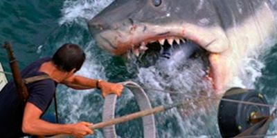 Les Dents de la mer sur Arte : la terrifiante histoire vraie à l'origine du film...