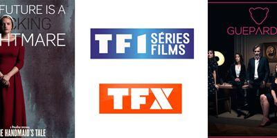 HD1 et NT1 se métamorphosent et deviennent TF1 Séries Films et TFX
