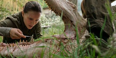 Natalie Portman dans une jungle hostile, un survival muet, Jared Leto chez les Yakusas... Les bandes-annonces à ne pas rater