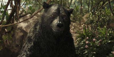 Mowgli : la légende de la jungle - Les acteurs VS les animaux qu'ils campent