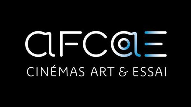 L'Afcae interpelle les frères Coen et Alfonso Cuarón sur la diffusion des oeuvres sur Netflix