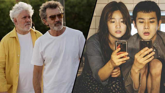 Douleur et Gloire et Parasite favoris pour la Palme d'Or de Cannes 2019 ?
