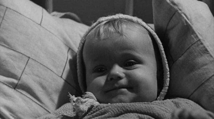 Photo du film La Revolte des jouets
