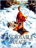 L&#39;Incroyable Voyage