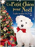 Un Petit chien pour No&#235;l
