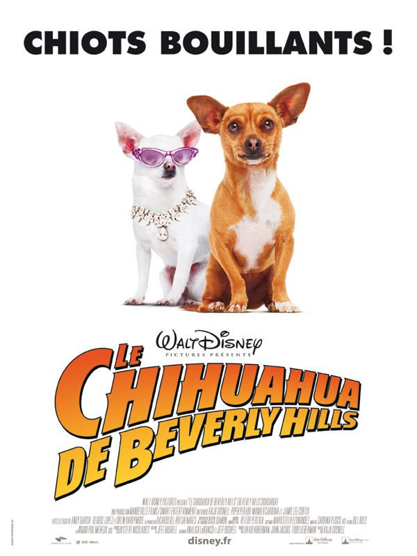 Image Le Chihuahua de Beverly Hills