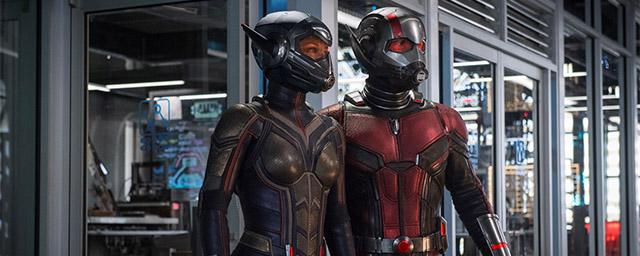 Ant-Man 2 : qui est la Guêpe Evangeline Lilly, nouvelle partenaire du super-héros miniature ?