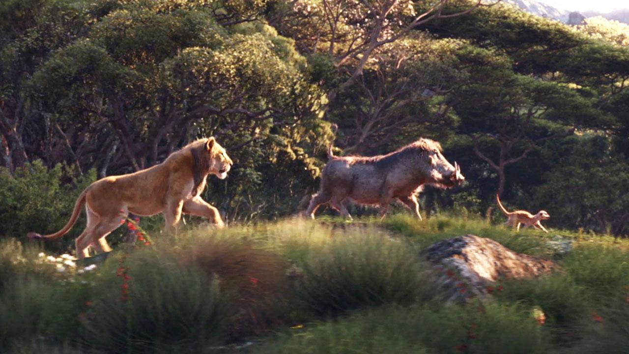 Le roi lion timon pumbaa et scar dans la nouvelle bande - Le roi lion les hyenes ...