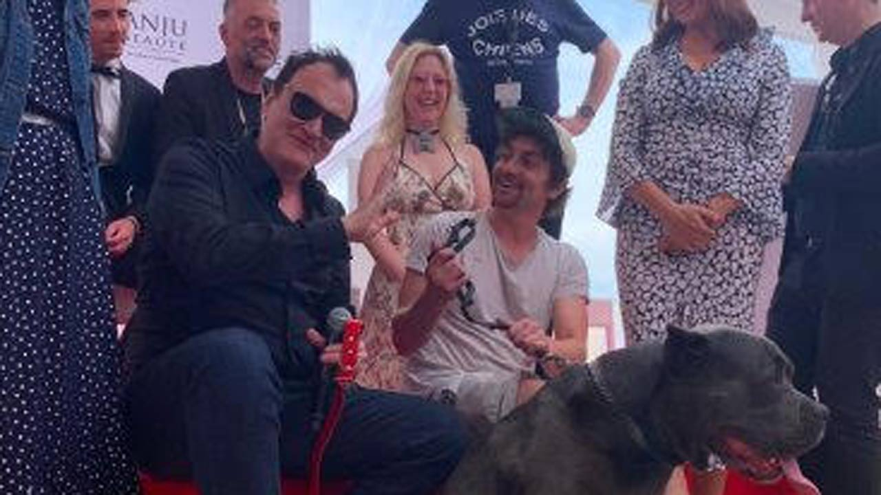Tarantino : la Palm Dog pour le chien de Once Upon a Time in Hollywood à Cannes