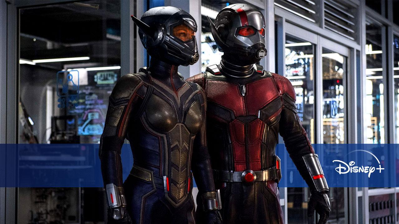 Nouveautés Disney+ du 23 au 29 juillet : Ant-Man et La Guêpe, Sam, la suite de Love Victor S2...