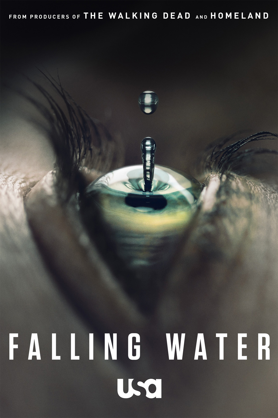 Falling Water 198063