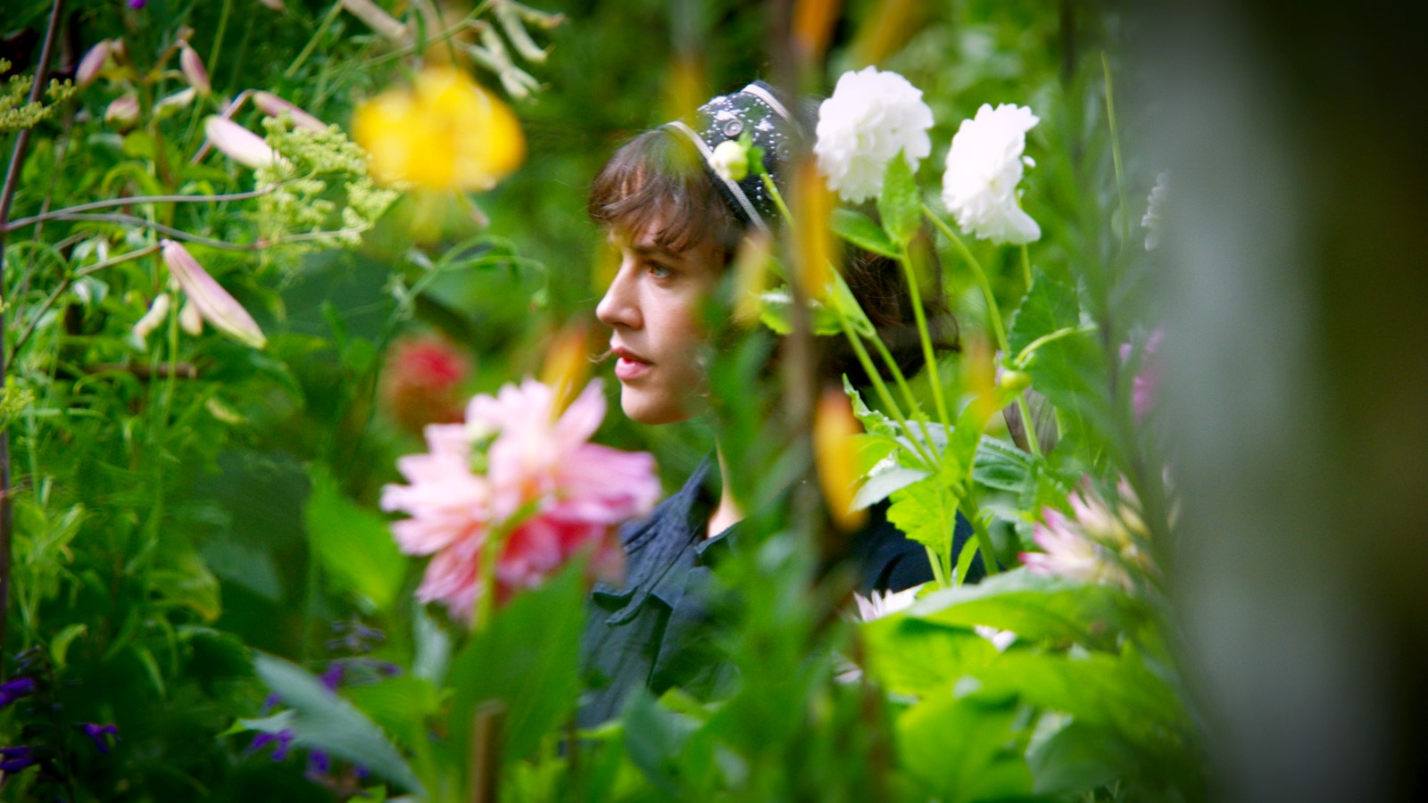 Photo du film le merveilleux jardin secret de bella brown for Le jardin voyageur peter brown