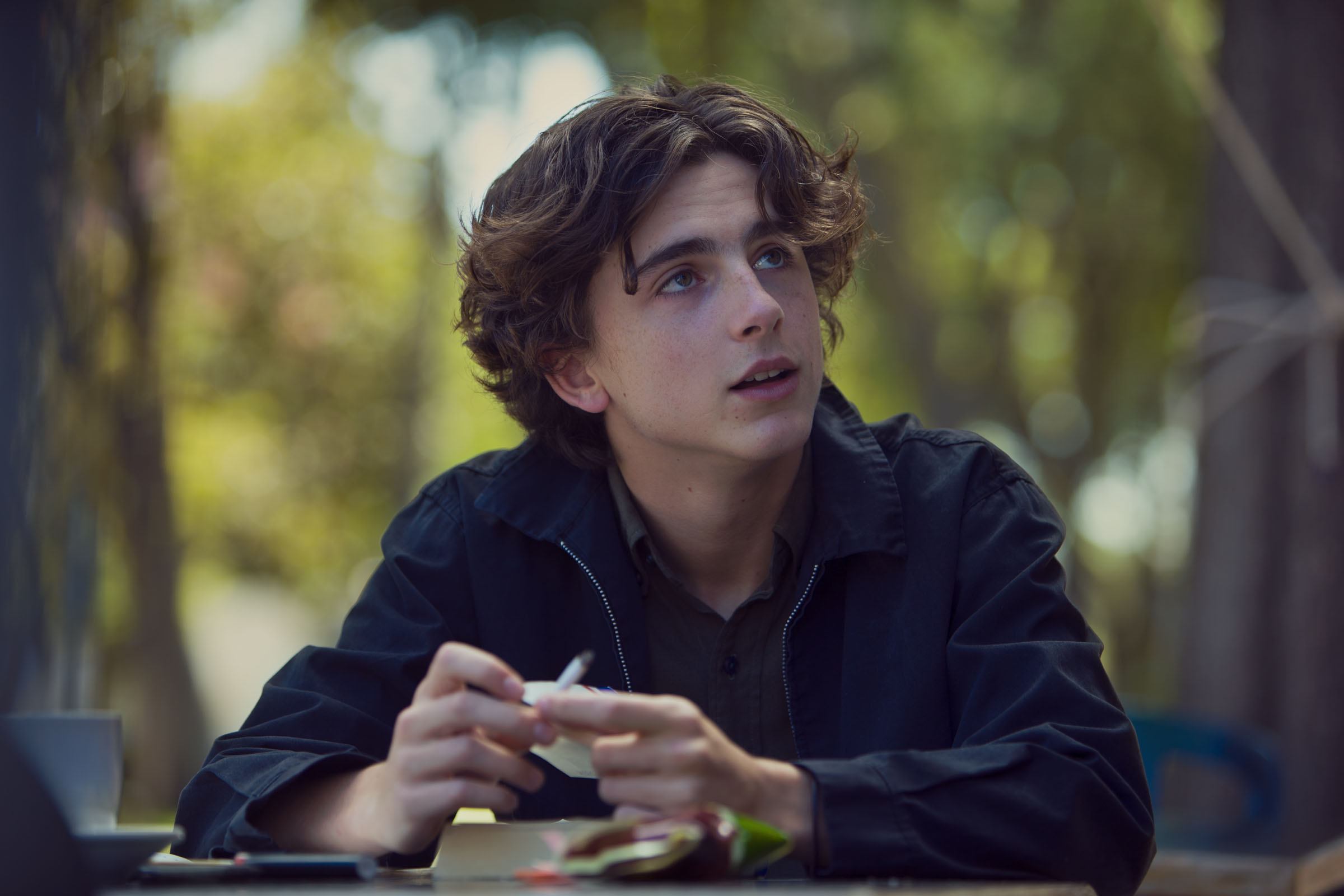 Photo De Timoth 233 E Chalamet Lady Bird Photo Timoth 233 E