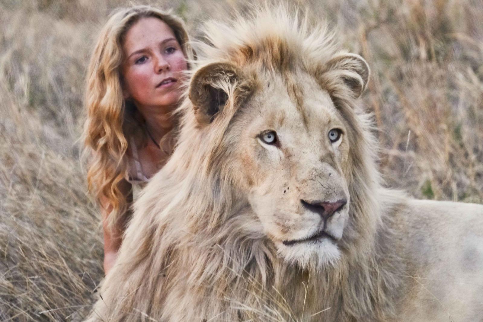 rencontre lion