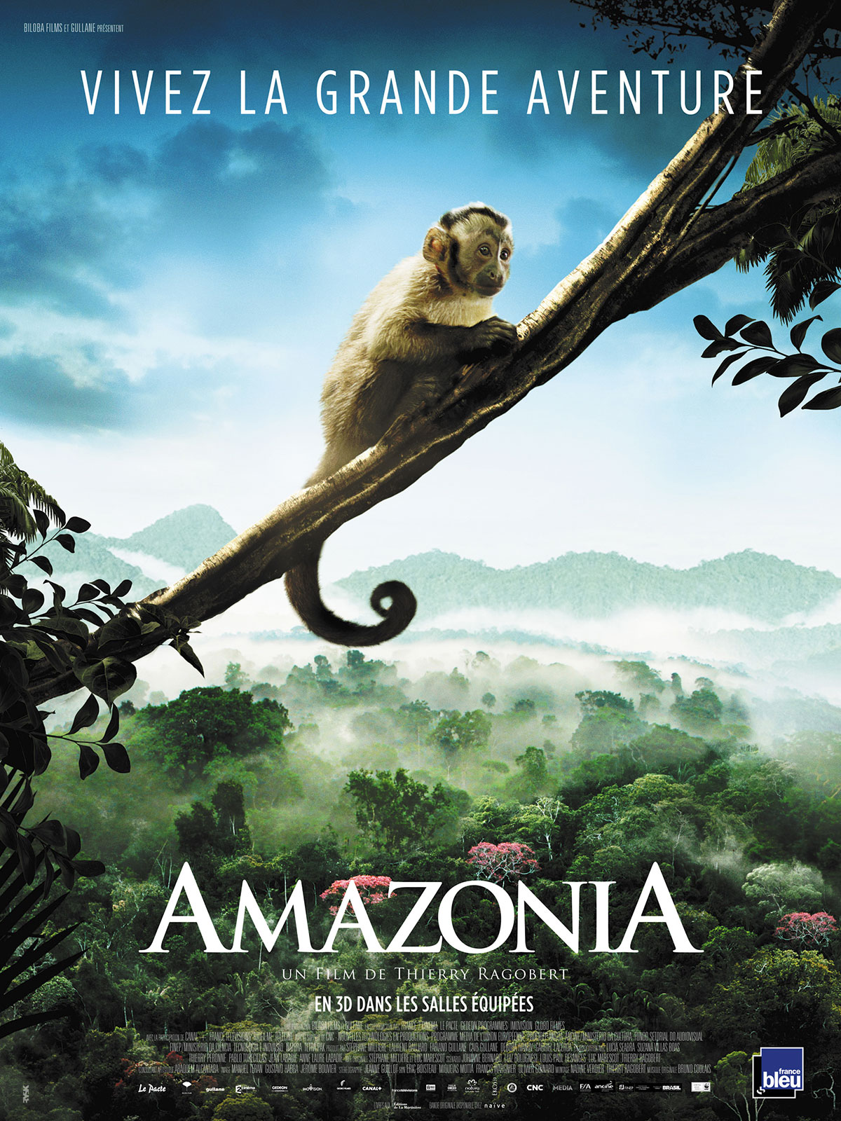 Amazônia streaming