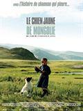 Photo : Le chien jaune de Mongolie
