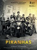 Photo : Piranhas