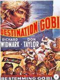 Destination Gobi : Affiche